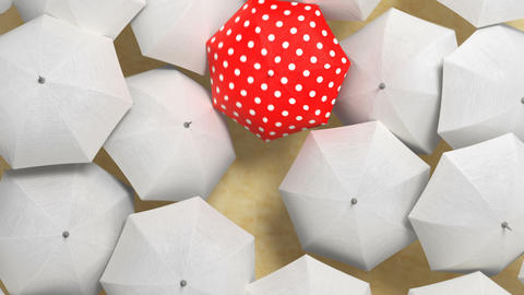Red Umbrella Wades Through a Flow of White Umbrellas Animation