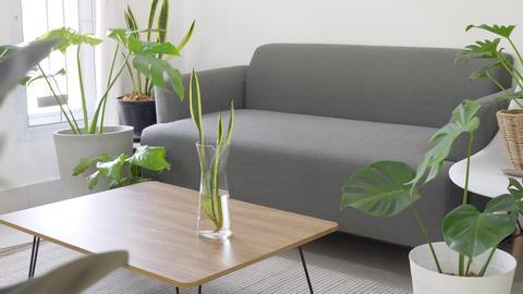 Slow motion,Cozy Modern Living Room Interior, Slider shot Footage