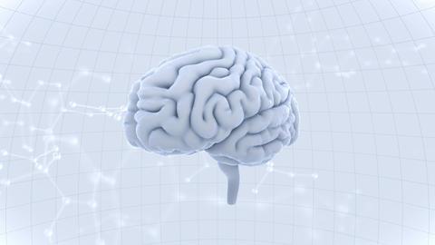 Brain Head 19 3 Molecular A1dW 4k Animation