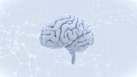 Brain Head 19 3 Molecular A1dW 4k Videos animados