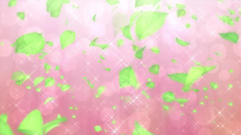 Scatter typeB leaf bgPink h264 Animation