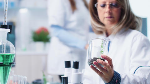 Selective focus of biologist analyzing plant samples Footage