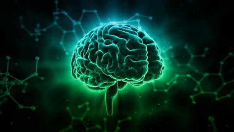 Brain Head 19 3 Molecular D1bD 4k GIF