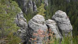Video footage of canyon in Saxon Switzerland sandstone rocks near bastei bridge Archivo