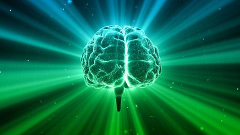 Brain Head 19 3 C1dD 4k CG動画