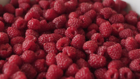 Pan shot of a Fresh organic raspberry berries. Close up shot Live Action