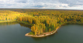 Golden Autumn. Forest And River. 0