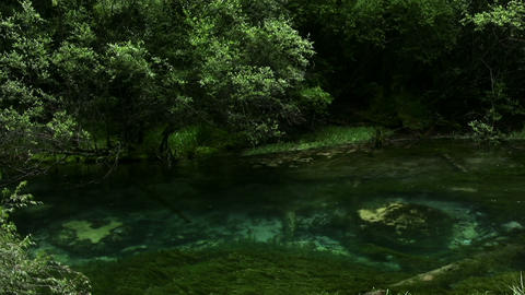 River with crystal clear water Footage