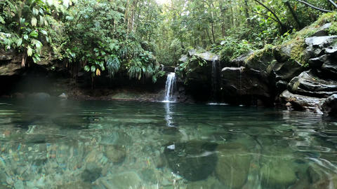 Bassin Paradise waterfall in Basse Terre jungle in Guadeloupe. Lesser Antilles Footage