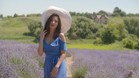 Stylish lovely woman walking in lavender blossoms Footage