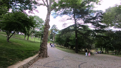 Beautiful Park View ライブ動画