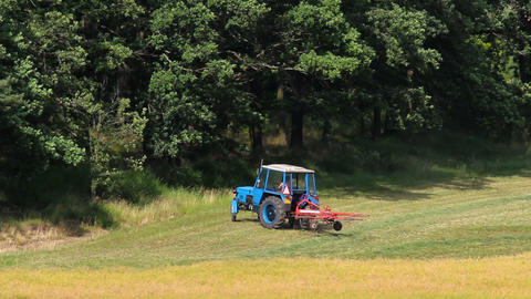 Blue tractor turn near forest, machine to turn dry grass, hay Footage
