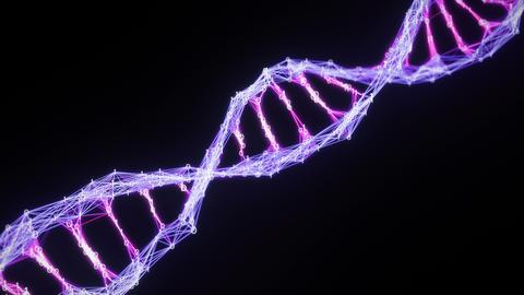 Isolated binary Digital Plexus DNA molecule strand Loop pink purple violet alpha Animation