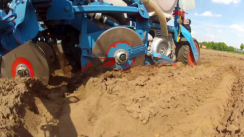 Closeup during the planting of maize Stock Video Footage