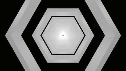 hexagon matte tunnel Animation