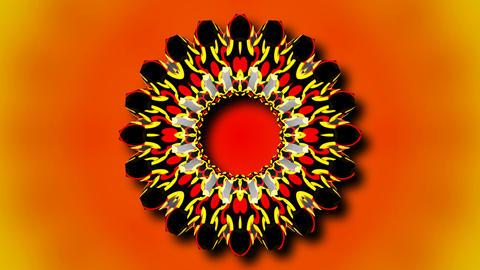 kaleida abstract flower Stock Video Footage