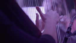 Women's hands playing the harp (close-up) Footage
