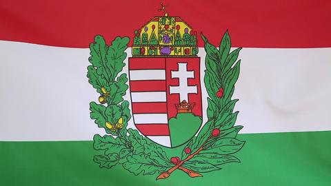Hungary flag with blazon Footage