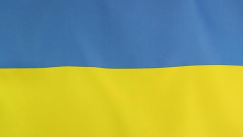National flag of Ukraine Footage