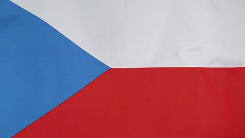 Textile flag of Czech Republic Live Action