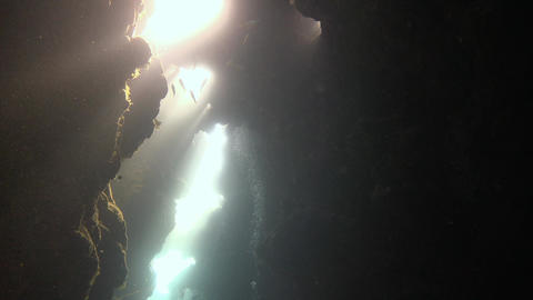 Exciting underwater diving in underwater caves of the reef Claudio. Diving in th Live Action