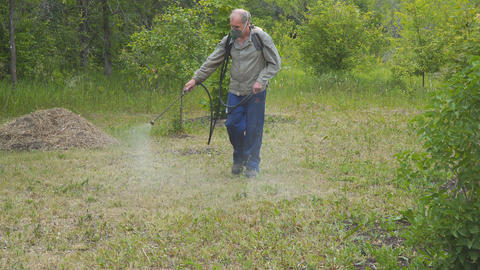 The man sprays the grass against insect pests. Spraying of insecticides at lawn Live Action
