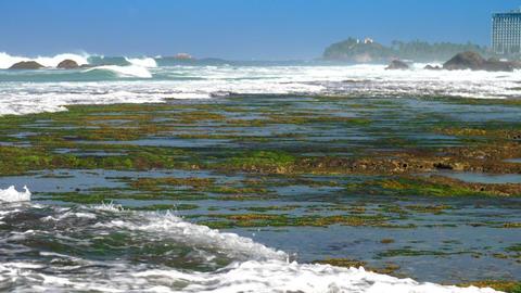 foaming ocean waves roll on green seaweed and coral reefs Footage
