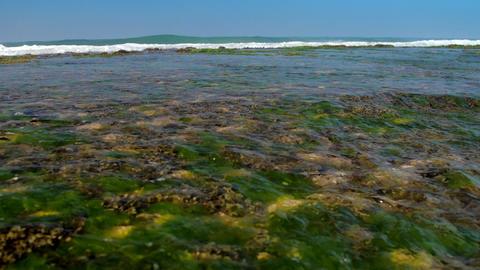 huge foaming ocean waves roll on coastline with coral reefs Footage