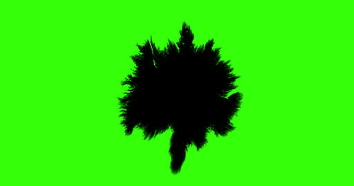 multi abstract splash ink paint brush horizontal and oblique stroke black transition on chroma key Live Action