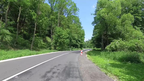 Beautiful forest road view drone video Bakony Hungary Summer 2019 Europe Footage