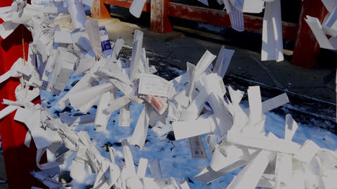 Paper wishes at Toshogu Shrine Live影片