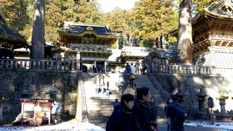 People walking around Toshogu Shrine Nikko Live影片