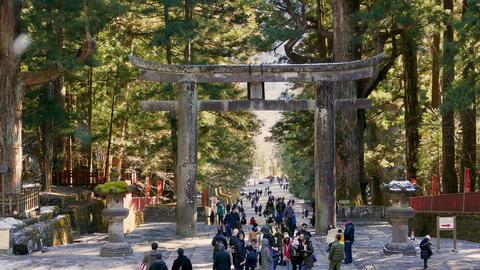 People walking through Ishidorii stone gate at Toshogu Shrine Nikko Japan Live影片
