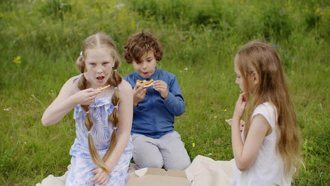 Children Group Spend Summer Time on Daisy Glade Footage