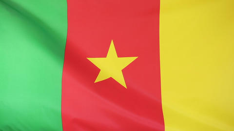 Textile flag of Cameroon Footage