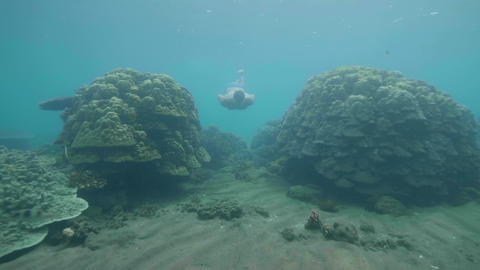 Man freediver in mask is swimming among coral reefs at ocean floor in tropics Footage