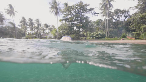 Man enjoys his vacation in tropics diving in ocean on sand beach with palms Footage