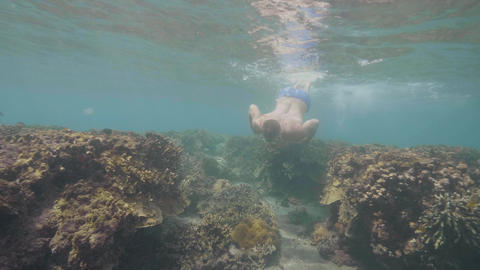 Man in mask swims over the coral reefs in ocean floor learning wildlife Footage