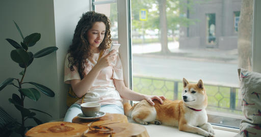 Attractive woman using smartphone sitting on window sill in cafe with puppy Footage