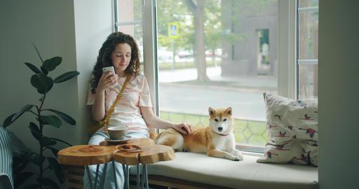 Pretty girl using smartphone stroking cute dog sitting on window sill in cafe Footage