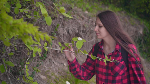 A attractive girl in a red checkered shirt. The girl walks along the road along Footage