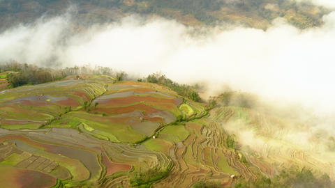 Aerial shot of the famous terraced rice fields of Yuanyang County China Footage