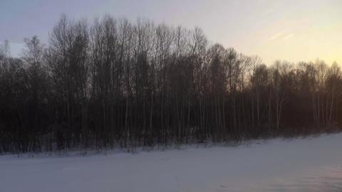 Siberian spring landscape Footage