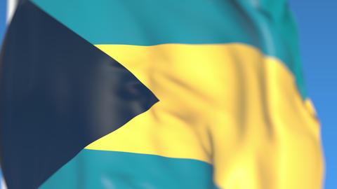 Waving national flag of Bahamas close-up, loopable 3D animation Footage