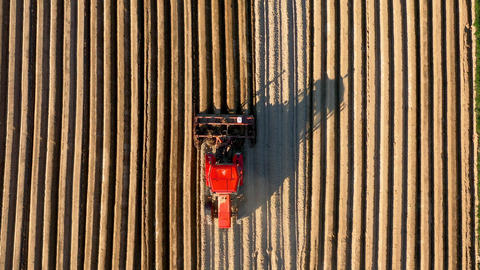 Aerial view of tractor performs seeding on the field Footage
