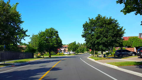 Driving Approaching Stop Sign on Residential City Road With Lush Trees During Summer Day. Driver Live Action