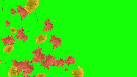 Autumn Theme Backgrounds 0