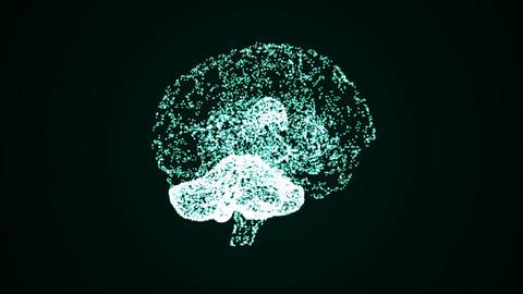 Brain 07 Animation