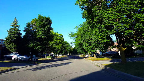Driving Residential City Road With Lush Trees During... Stock Video Footage