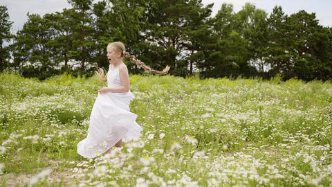 Girl Daisy Lawn Rotate Field Bloom Outdoor Nature Footage